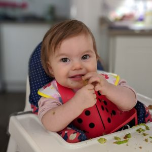 baby led weaning getting enough iron